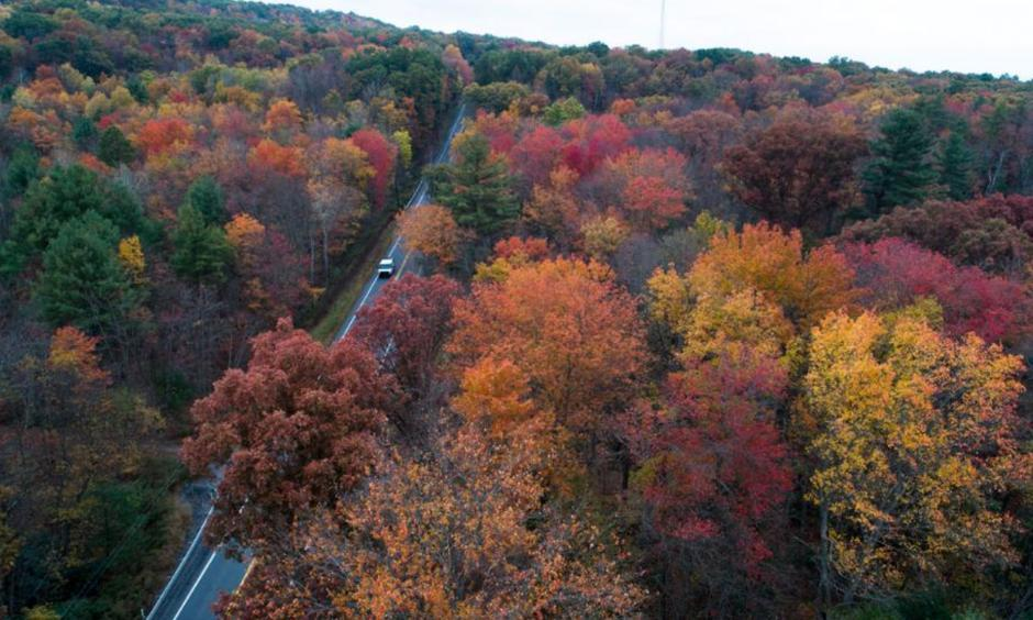 In this Oct. 23, 2017, photo above, fall colors begin to show along Route 209 in Reilly Township, Schuylkill County, Pennsylvania. Photo: David McKeown, Republican-Herald via AP