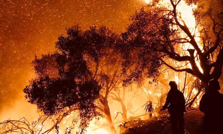Firefighters knock down flames as they advance on homes atop Shepherd Mesa Road in Carpinteria, California, U.S. December 10, 2017. Photo: Mike Eliason, Santa Barbara County Fire Department