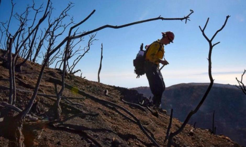 In this photo provided by the Santa Barbara County Fire Department, Santa Barbara County Fire Capt. Ryan Thomas hikes down steep terrain below East Camino Cielo to meet with his crew and root out and extinguish smoldering hot spots in Santa Barbara, Calif., Tuesday, Dec. 19, 2017. Officials estimate that the Thomas Fire will grow to become the biggest in California history before full containment, expected by Jan. 7, 2018. Photo: Mike Eliason, Santa Barbara County Fire Department via AP