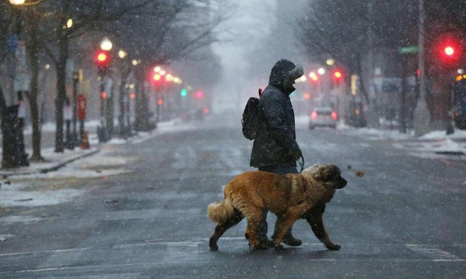 A man walks his dog through the empty streets of Boston as snow begin to fell Thursday. Photo: Spencer Platt, Getty Images