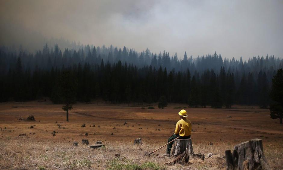 A U.S. Fish and Wildlife Service firefighter monitors the Rim Fire in August 2013 near Groveland, California. Photo: Justin Sullivan, Getty Images