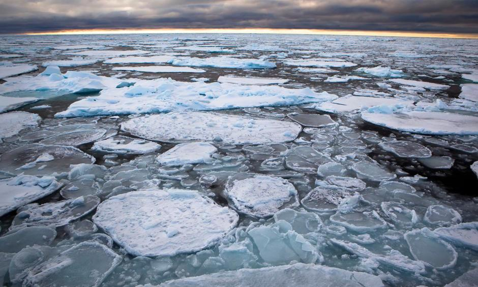 Scientists say thinning of the sea ice has reached even the coldest parts of the Arctic. Photo: Nick Cobbing, Greenpeace