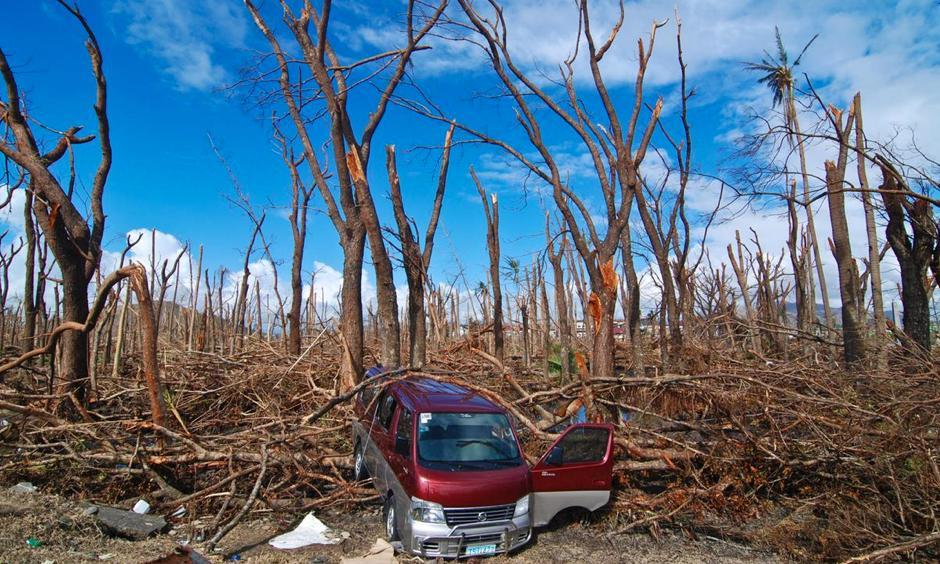 A wrecked van lies amid felled trees in Tacloban City on November 14, 2013 in Tacloban. Photo: Dondi Tawatao, Getty Images