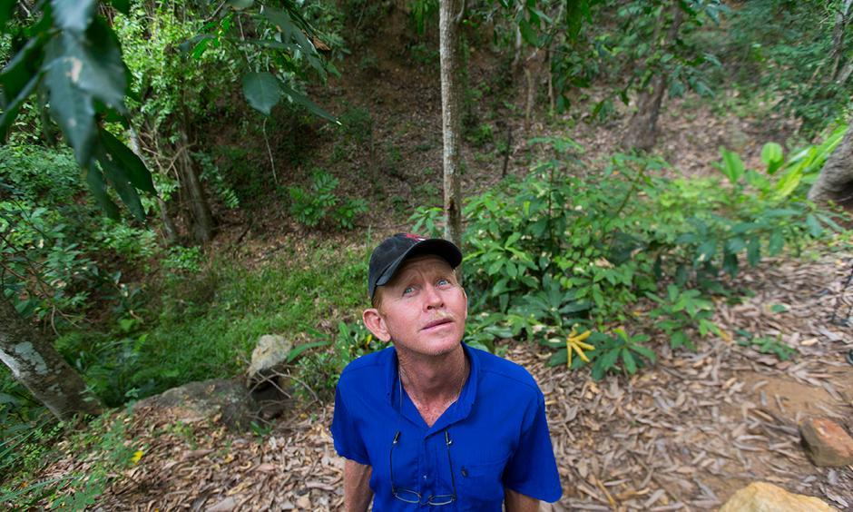 """José Luis Machado, a housekeeper at Fazenda Macacos, looks upward into the trees where a group of eight to 10 monkeys had been permanent residents. Dead monkeys began appearing on the property in Itapina on the last day of 2016. """"They would fall down from the tree and die on the (forest) floor,"""" Machado said. Photo: Mark Hoffman, Milwaukee Journal Sentinel"""