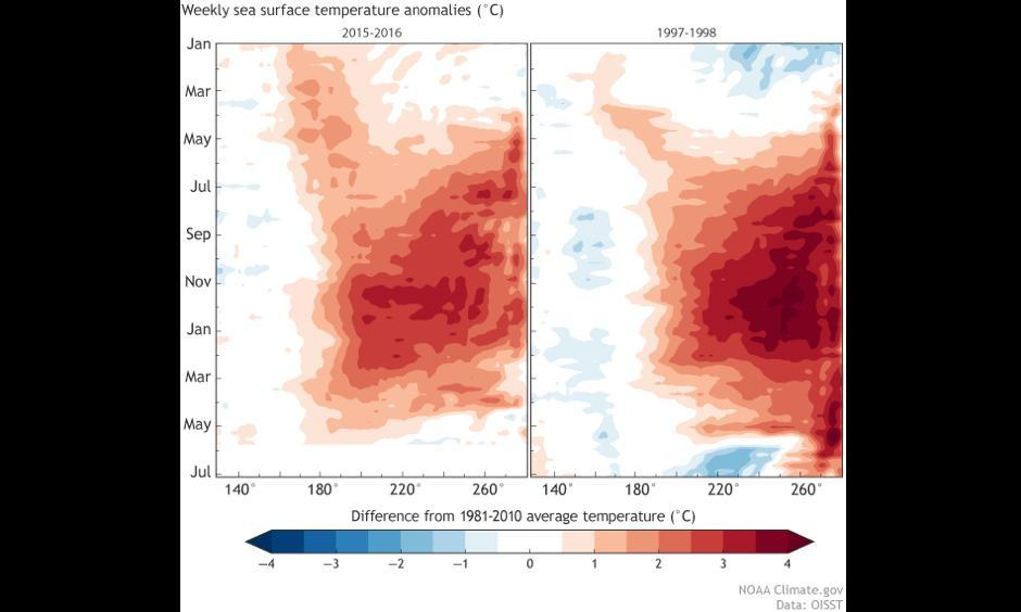 Equatorial Pacific sea surface temperature, 2015-2016 (left) compared to 1997-1998 (right). Each row in this type of image is the departure from average at that time. Weekly data is shown starting in January 2015 and 1997 (top). Data ends at the end of May 2016 (left) and end of June 1998 (right). Image: Climate.gov, CPC data