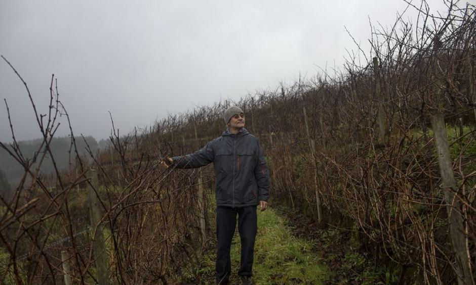 Luis Moller, one of the founders of Vina Trapi, walks around his vineyards. Photo: Cristobal Olivares, Bloomberg