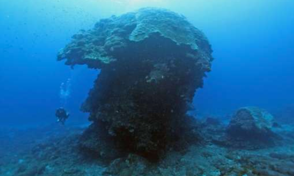 "The ""Big Mushroom"" is located in the waters near Green Island off Taiwan's east coast, attracting divers from around the world. Photo: Phys.org"