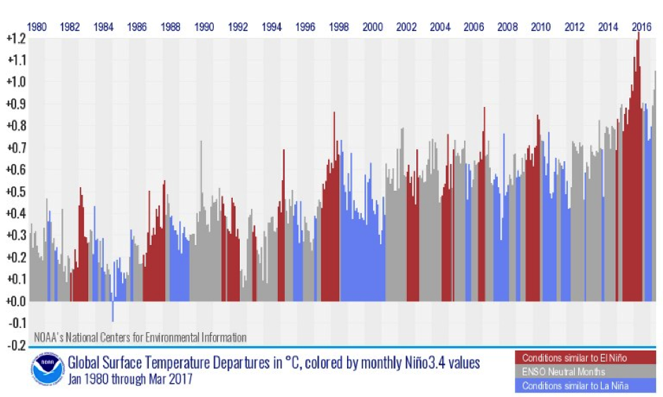 Global monthly temperature departures (from 1981–2010 average) color-coded by whether the Pacific was experiencing an El Niño (red), a La Niña (blue) or neutral conditions (gray). Image: NOAA