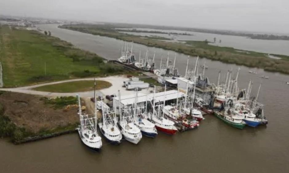 Shrimp boats are parked in Venice, La., near the mouth of the Mississippi River and the Gulf of Mexico, in 2010. Photo: Gerald Herbert/AP