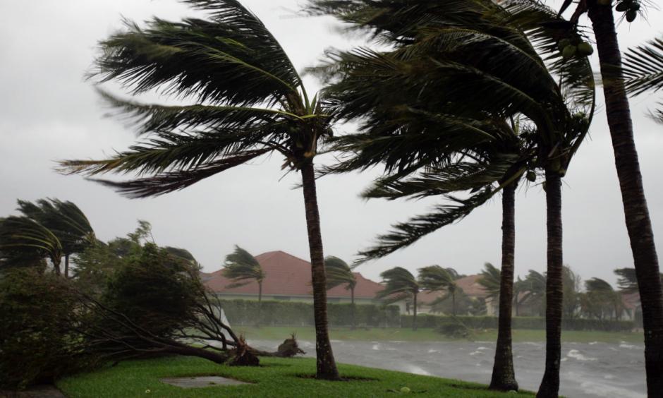 Hurricane Wilma made landfall in Florida in October 2005. Photo: J. Pat Carter / AP