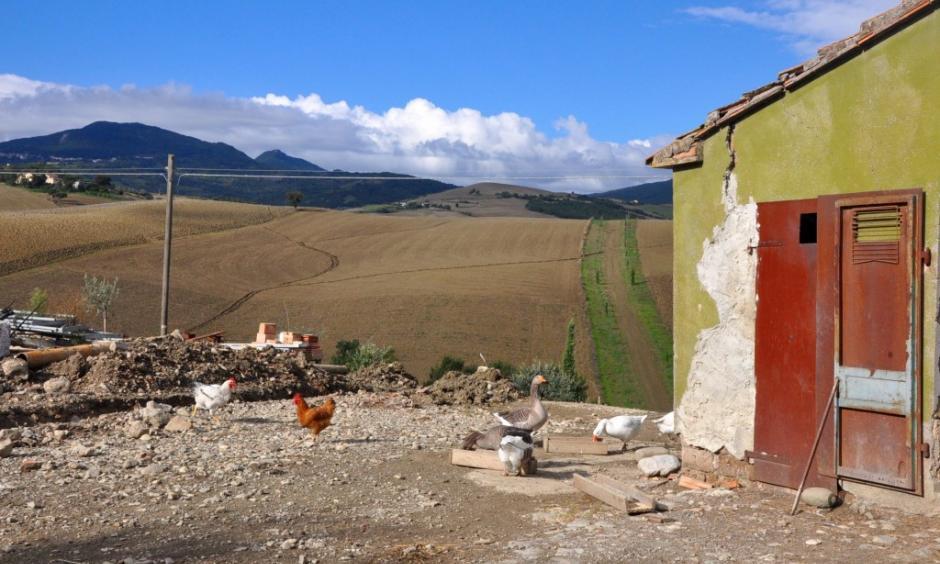 Photo: Walks of Italy