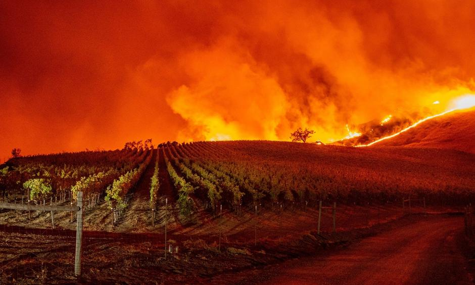 Flames approach rolling hills of grapevines during the Kincade fire near Geyserville, California, on Thursday, October 24, 2019. Credit: Josh Edelson/AFP via Getty Images
