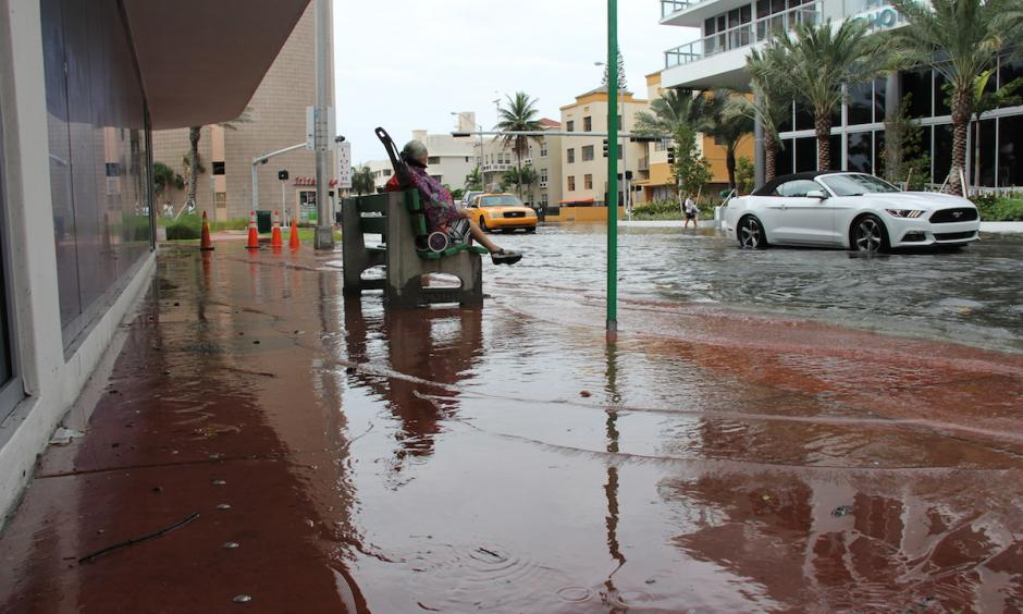 King tides flood Miami streets. Photo: NOAA