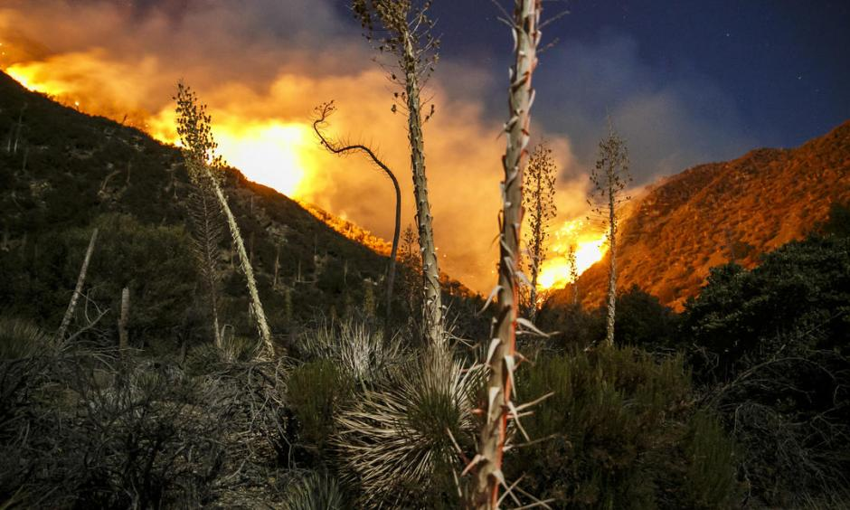 The Blue Cut fire continues to burn north of Lytle Creek in San Bernardino County. Photo: Marcus Yam / Los Angeles Times