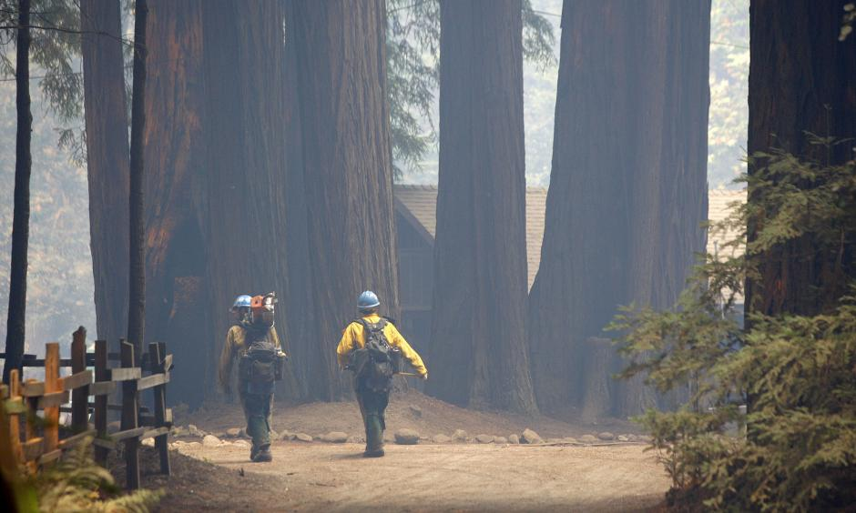 Members of the Sierra Hot Shots walk through Camp Pico Blanco on Aug. 6. The Boy Scout camp went undamaged from the Soberanes Fire. Photo: Vern Fisher / Associated Press