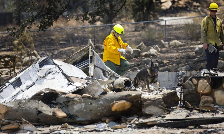 Investigators and a cadaver dog from Santa Clarita search through the rubble of a burned home in the Squirrel Mountain Valley. Photo: Gina Ferazzi / Los Angeles Times