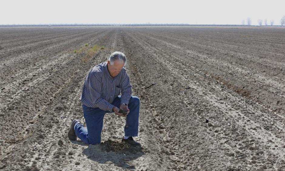 In this Feb. 25, 2016, photo, Mike Stearns, chairman of the San Luis & Delta-Mendota Water Authority, checks the soil moisture on land he manages near Firebaugh. Photo: Rich Pedroncelli, AP