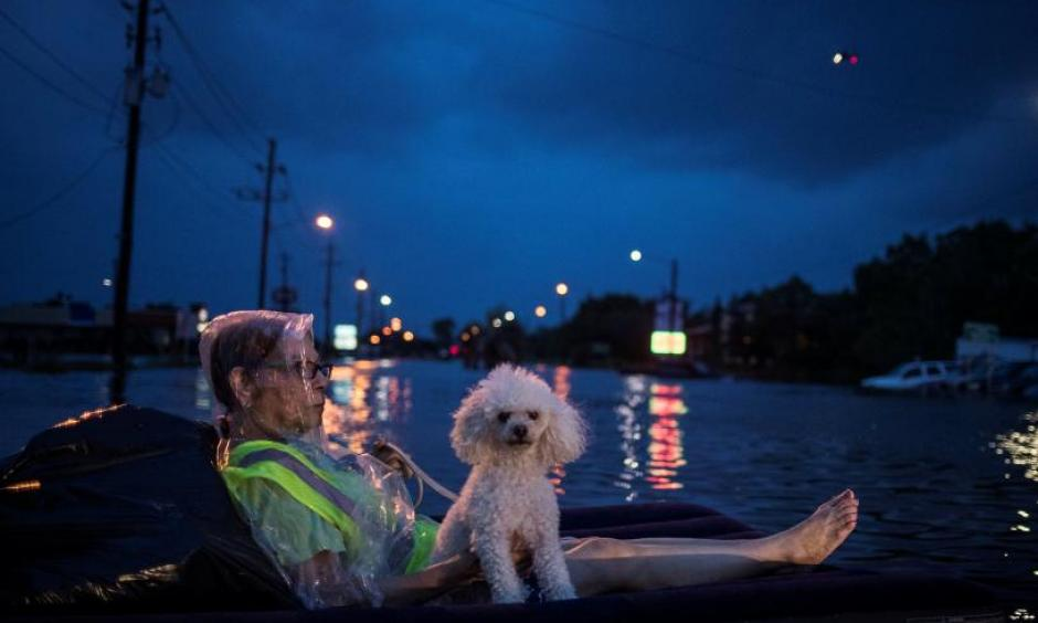 A rescue helicopter hovers in the background as an elderly woman and her poodle use an air mattress to float above flood waters from Tropical Storm Harvey while waiting to be rescued from Scarsdale Boulevard in Houston, Texas, U.S. August 27, 2017. Photo: Adrees Latif