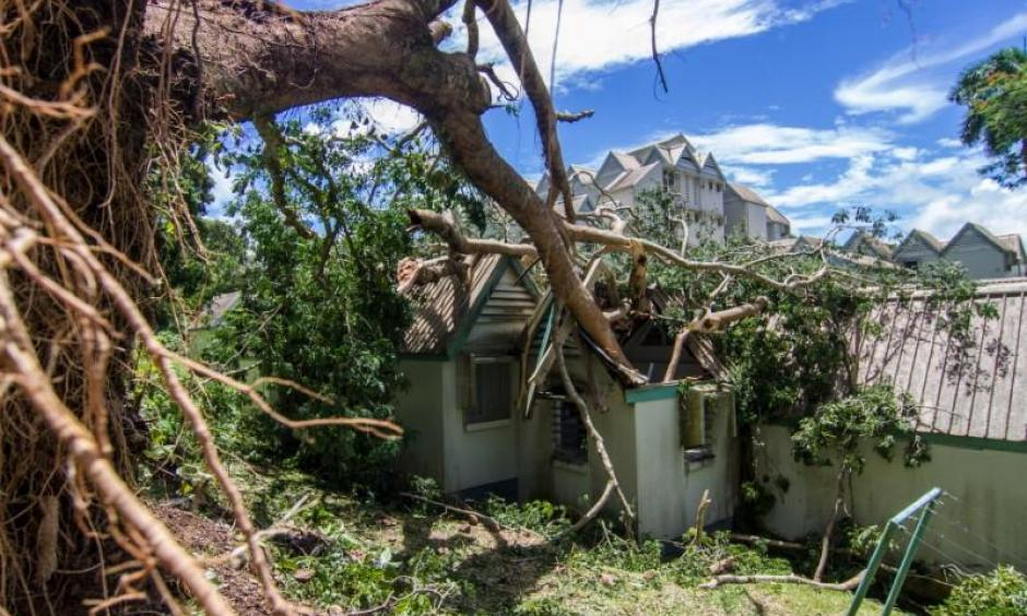A tree uprooted by Cyclone Winston lays in the roof of a house in Fiji's capital Suva, February 21, 2016. Photo: Emma Stadelmann, Handout via Reuters