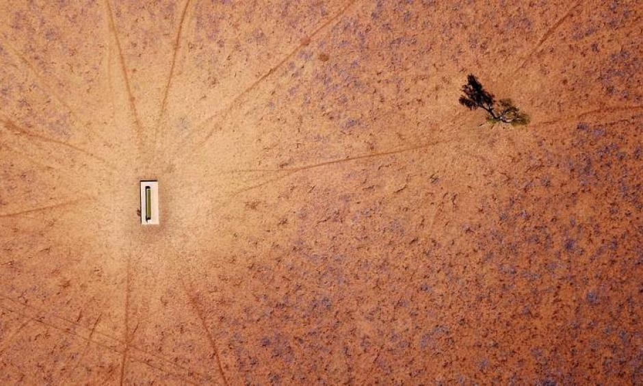 A lone tree stands near a water trough in a drought-effected paddock located on the outskirts of the town of Walgett, in New South Wales, Australia, July 20, 2018. Photo: David Gray, Reuters