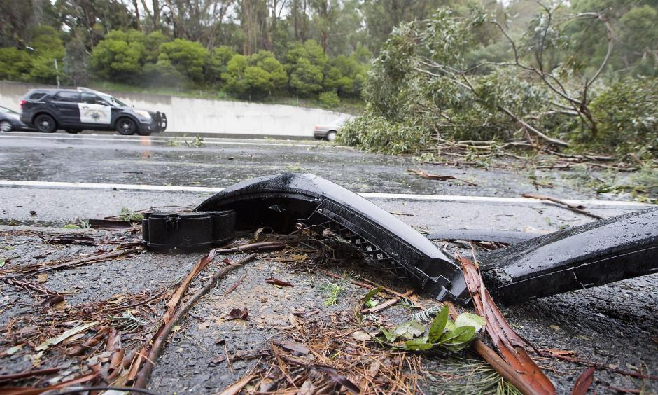 A eucalyptus tree fell across the southbound exit ramp at Highway 13 and Redwood Rd., Saturday, Jan. 7, 2017 in Oakland, CA. Photo: Eric Kayne, Special To The Chronicle