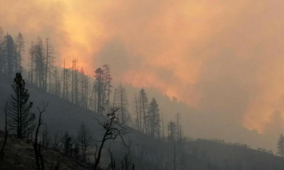 The Rough fire is the largest active fire in California, the majority of which is burning the the Sierra National Forest and Sequoia National Forest. (US Forest Service Handout / EPA)