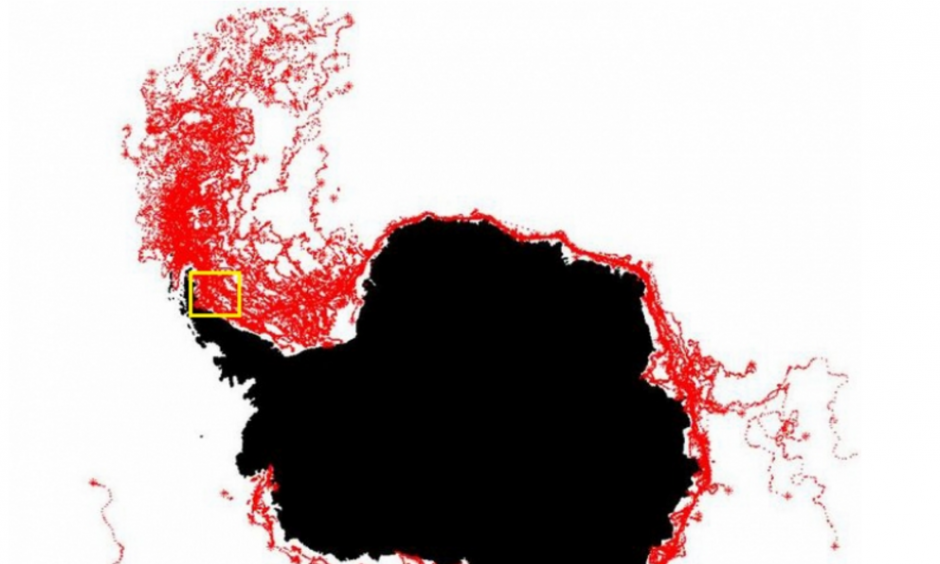 The paths of all icebergs observed by ESA from 1999-2010. The yellow box shows where the Larsen C iceberg will start its journey. Image: ESA