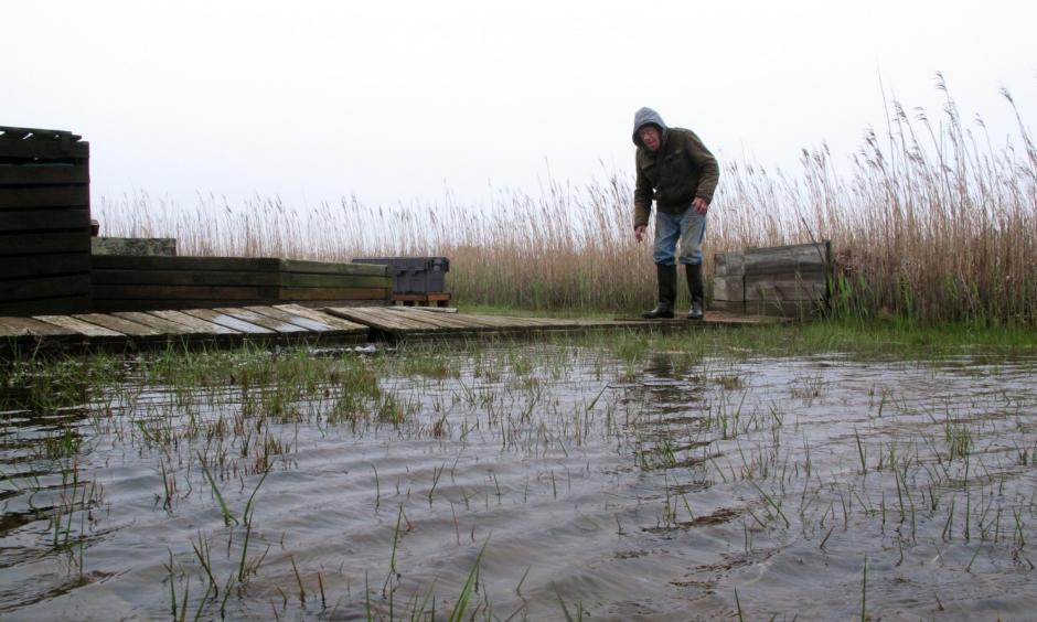 In this April 26, 2017, photo Jim O'Neill walks across a makeshift boardwalk he built in his back yard in Manahawkin N.J., because the property is almost always under water, even on sunny days. He lives in a low-lying area near the Jersey shore, and is often affected by back bay flooding. Photo: Wayne Parry, Associated Press