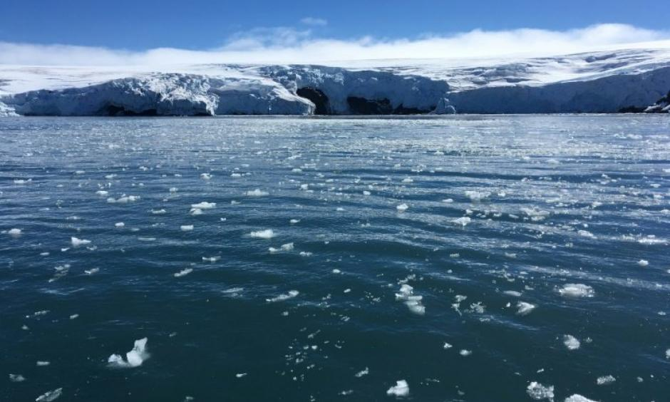 Sea ice cover in Antarctica has dropped to its second-lowest on record, Australian authorities say, adding that it is not yet clear what is driving the reduction after several years of record-highs. Photo: Phys.org