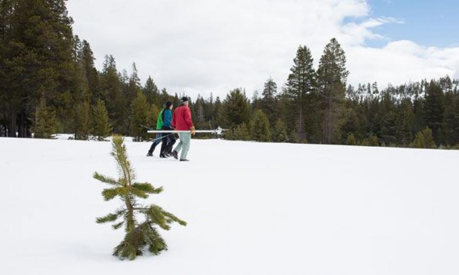 Snow surveyors recorded a much higher number than they did last year, but that doesn't mean the drought is done. Photo: Kelly M. Grow/California Department of Water Resources