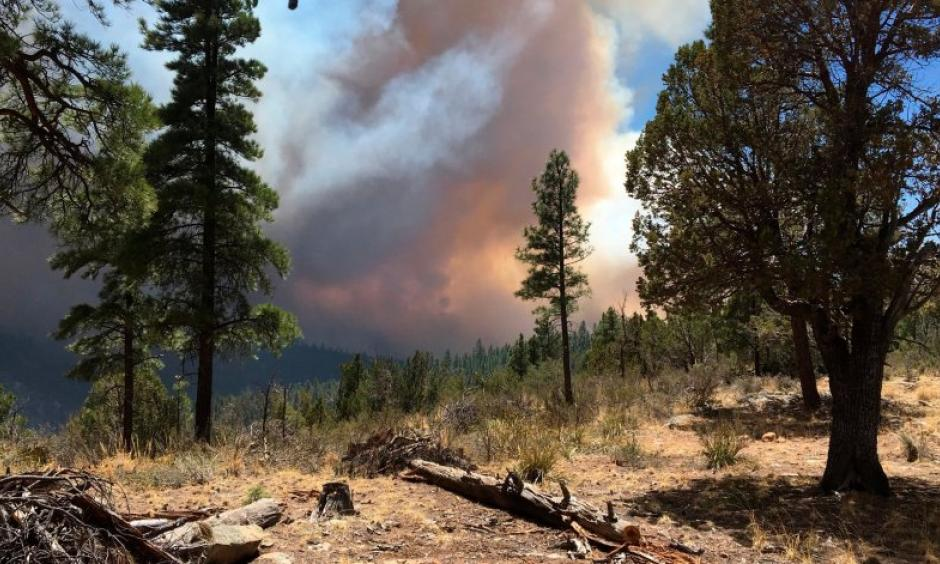 This April 29 photo, provided by the Arizona Department of Forestry and Fire Management, shows a wildfire burning in north-central Arizona. Photo: AP