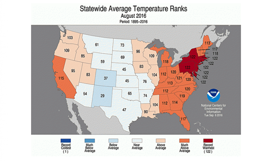 How the average temperature of each state in the Lower 48 ranked for August. Image: NOAA