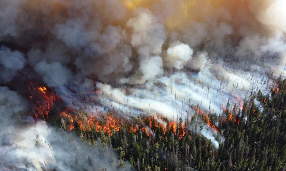 The Alder Fire burns in Yellowstone National Park in 2013. Image: Mike Lewelling / National Park Service