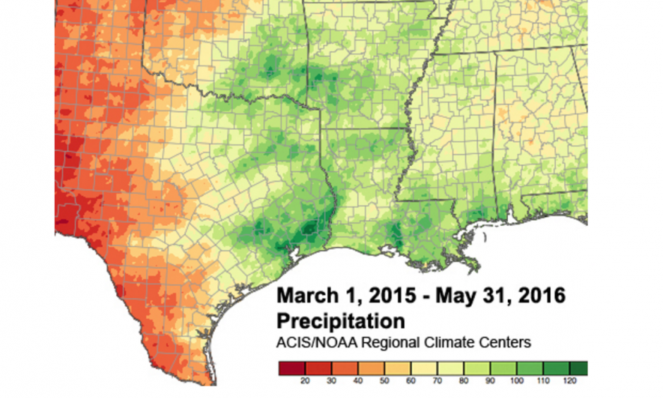 Accumulated precipitation from March 1, 2015 through May 31, 2016 in the south-central U.S. The darker green contours highlight areas that have picked up at least 100 inches of precipitation during that time.  Image: ACIS/ NOAA Regional Climate Centers