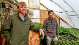 Rick Dalen (left) with Northern Harvest Farm and Adam Kemp with Uff-da Organics and Northern Harvest Farm talk about sustainable farming practices in a greenhouse at Northern Harvest Farm near Wrenshall. Photo: Clint Austin