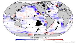 Much of the ocean is seeing sharp drops in oxygen levels (purple). Photo: Georgia Tech