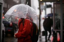 Jeremy Kahn waits for the bus in the rain in West Seattle last month. Photo: Erika Schultz, The Seattle Times