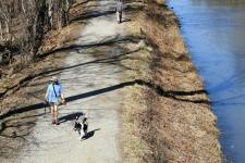 In shorts and a T-shirt, Sara Walters and her dog, Rolo, walk along the C&O Canal towpath on Wednesday. Photo: Katherine Frey, The Washington Post