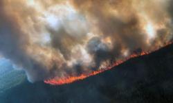 The Rainbow 2 fire, burning near Delta Creek, Alaska, late last month. Photo: Handout/Reuters