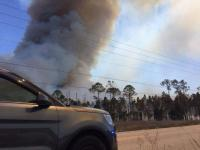Hundreds of acres of mostly undeveloped grassland in Miami-Dade County burned this weekend. Photo: Associated Press