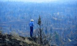 Tim Weyer tours his ranch, which was consumed by the Lodgepole fire complex, Tuesday, July 25, 2017 in Sand Springs, Montana. Image: Rion Sanders, The Great Falls Tribune via AP