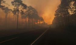 Smoke is seen during sunset as the West Mims fire burns in the Okefenokee National Wildlife Refuge in a photo released April 29, 2017. Photo: Mark Davis, Fish and Wildlife Service/Handout via Reuters