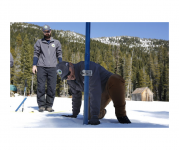 Climate change is causing snowpack decline in California